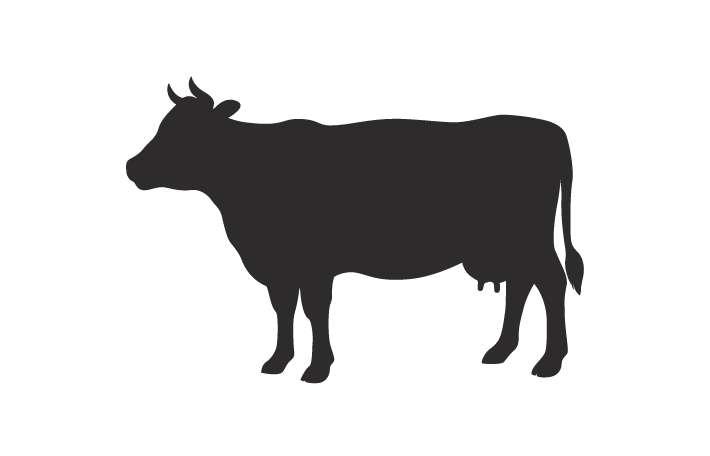 牛肉ソーセージ